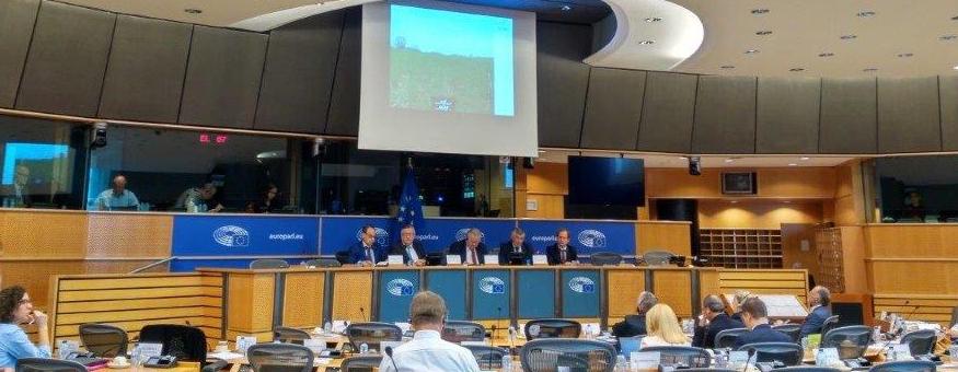 PRESENTATION IN THE EUROPEAN PARLIAMENT